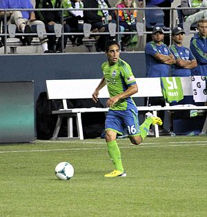 David Estrada